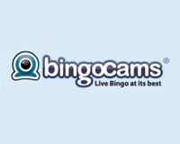 Bingo cams